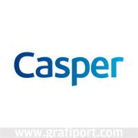 http://www.grafiport.com/logolar/2010/12/17/jpg/casper-bilgisayar_00yr0.jpg